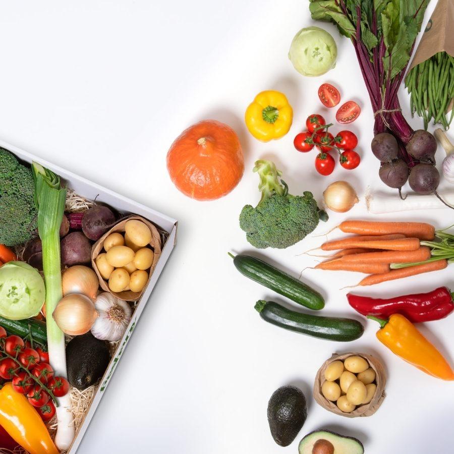 Gemüsekiste Freshany